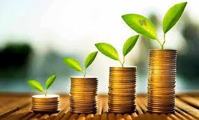 Pelajari Dulu Pengertian dan Jenis – Jenis Untuk Mulai Investasi